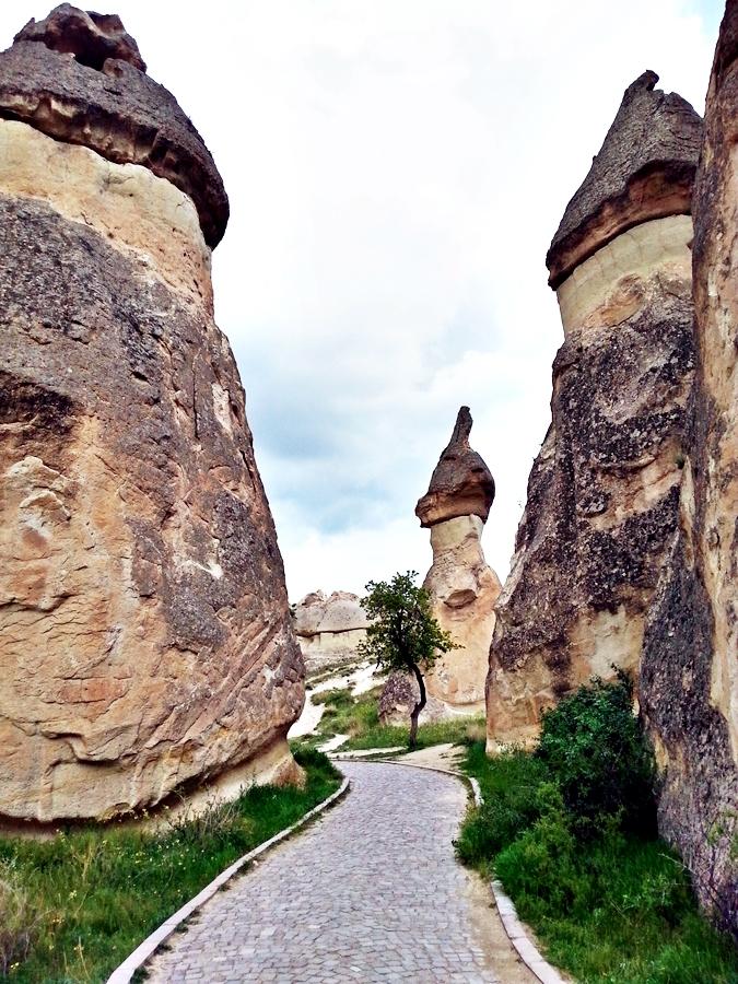 pasabagı-kapadokya